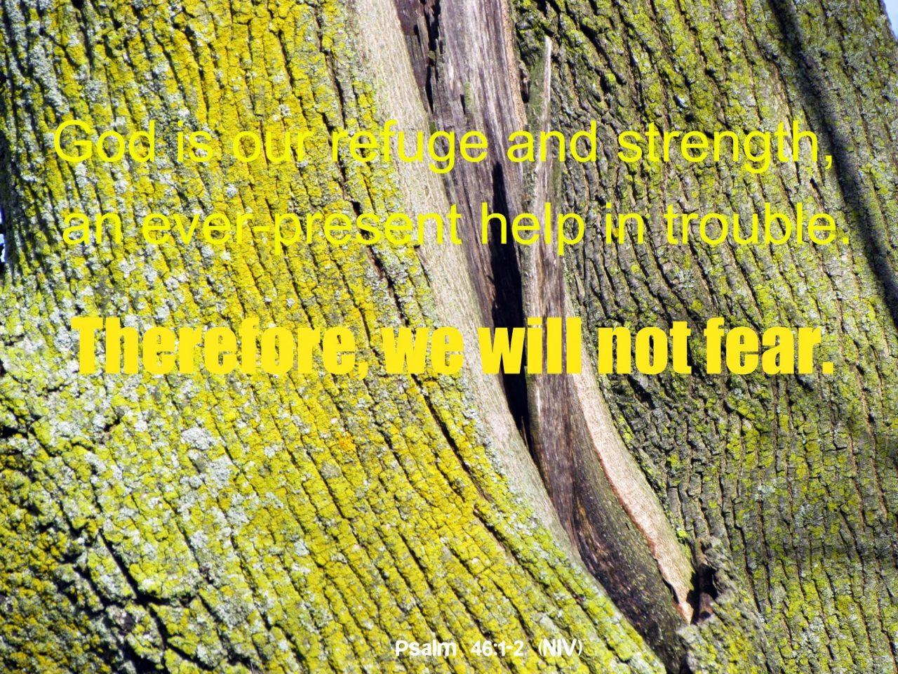 when fear rises