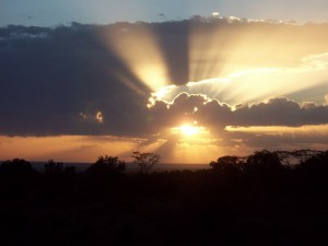 sunset-african-plains